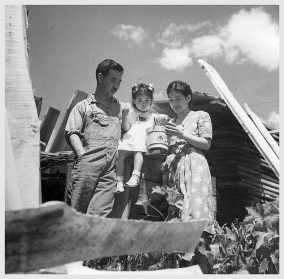 familyportrait_woodpile_ng_bobh